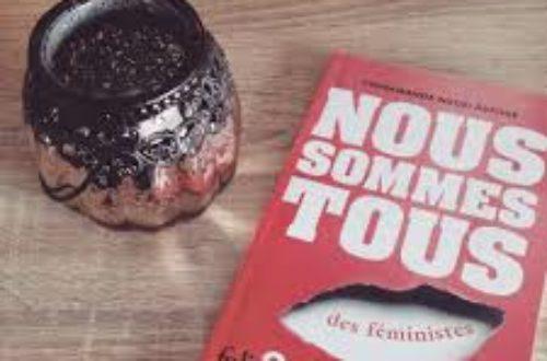 Article : Commentaires sur un coup de cœur lecture : Nous sommes tous des féministes.